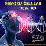 Memoria Celular, Sesion Memoria Celular
